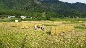 尾崎ファーム農賊団の歴史